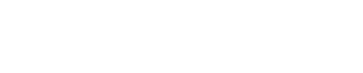 The Safari Store logo